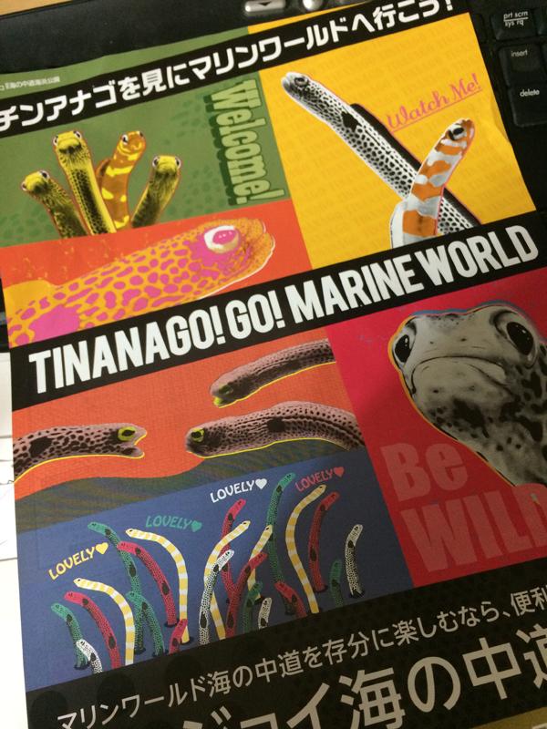 チンアナゴのポスター - チンアナゴの「チン」は「TIN」なの?「CHIN」なの?